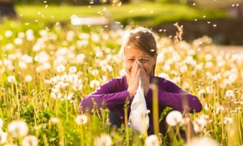 Allergies Saisonnières Kiroclinique